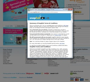 The Fine Print of Photo Sites: Are Your Images Really Safe Online?